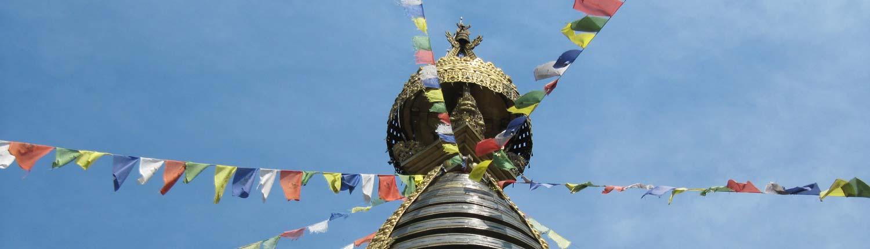 Ausbildungsstart: 5 Tibeter® Trainer